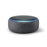 Amazon Echo Dot Free with $500 order