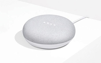 Google Home Mini Free with $500 order